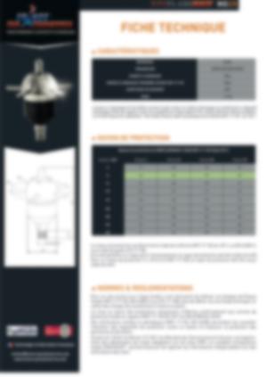 technical datasheet Ioniflash Mach Ng 25
